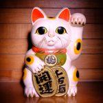 高額当せんを招く猫が実在!店番を始めたら高額当選続出!!